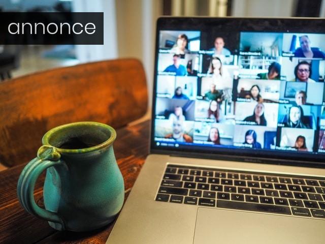 Online møder